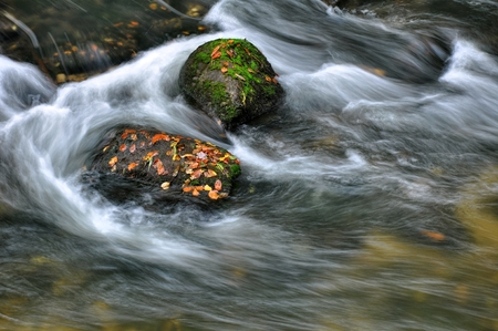 Autumn river with fast flowing water and rocks filled - leaves