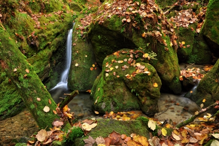 Autumn creek with colorful leaves and many stones Фото со стока