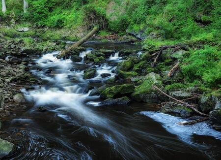 hill of tara: Wild Blanice river flowing through a deep canyon in the Czech Republic