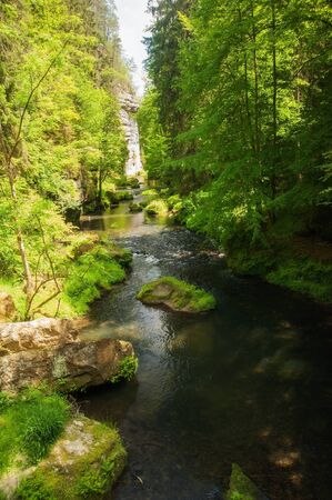 czech switzerland: Wild River Kamenice in Svizzera Ceca in un profondo burrone