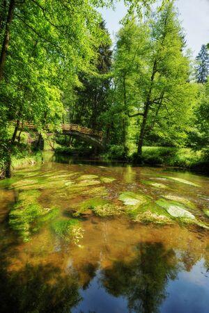 czech switzerland: Wild River Kamenice flowing between rocks in the Czech Switzerland