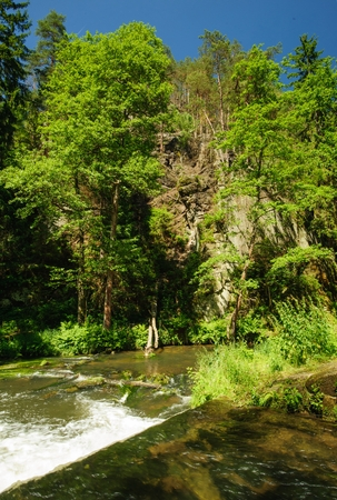 czech switzerland: Wild River Kamenice flowing between rocks in the Czech Switzerland