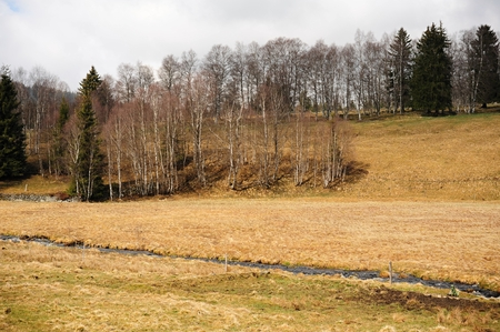 Spring landscape with meadow, trees and hills in Sumava Stock Photo