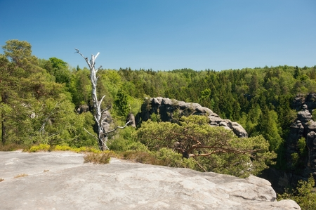 Sandstone rocks, forests and blue sky in the Czech Switzerland Stock Photo