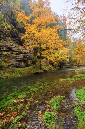Autumn colored trees, leaves, rocks around the beautiful river