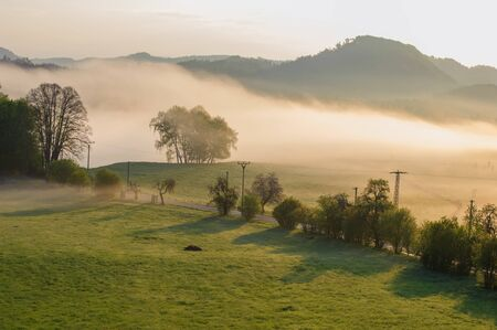 Autumn landscape with hills and forests in sunny morning mist