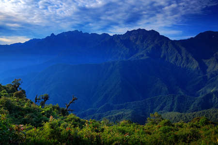cordillera: Moutain tropical forest with blue sky and clouds,Tatama National Park, high Andes mountains of the Cordillera, Colombia