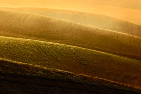 sow: Sow field, wavy brown hillocks, agriculture landscape, nature carpet, Tuscany, Italy Stock Photo