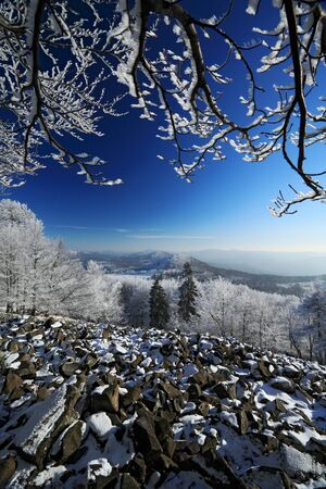 stone cold: Stone of sea landscape with snow and dark blue sky and branches with white snow rime during cold winter.