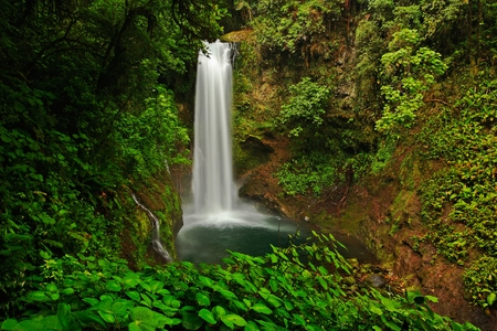 La Paz Waterfall gardens, with green tropical forest, Central Valley, Costa RIca