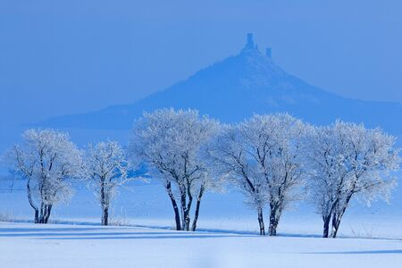 Winter scene with snow and trees. Hazmburk gothic castle on rocky mountain, hill landscape in Ceske Stredohori, Czech republic. Cold nature with ruin on top of the hill. Rime blue white trees.