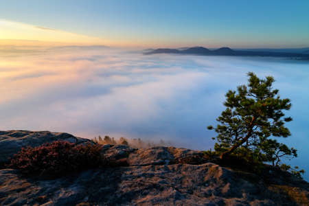 Sandstone peaks increased from foggy background, the fog is orange due to sunrise, sun on the sky, Germany. Beautiful morning view over sandstone cliff into deep misty valley in Saxony Switzerland. Stock Photo
