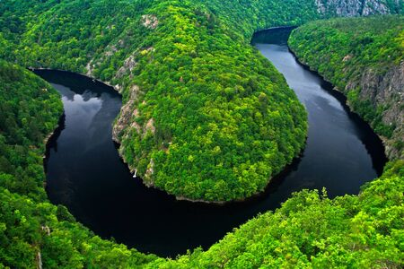 River canyon with dark water and summer green forest.