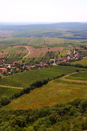 vineyard plain: South moravian countryside with vineyards Stock Photo