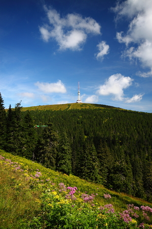 highest: Fresh scenery of the hills with transmitter and blue cloudy sky