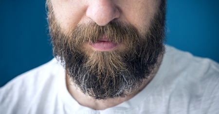 long beard: Closeup of long beard and mustache man