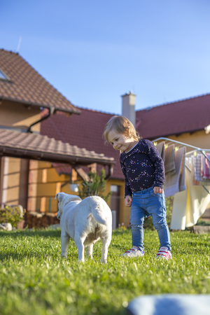 a two year old child enjoying a garden with a dog