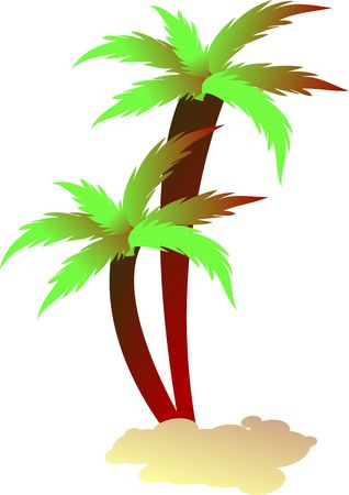 palm tree isolated on white background , similar images also available for individual download as well as in packs in portfollio
