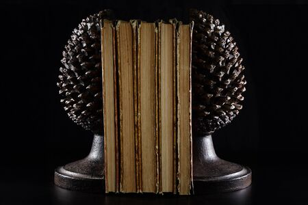 Pile old books and book holders in the form of an asparagus head