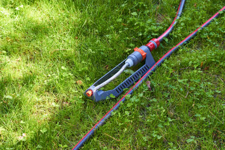 The grass sprinkler irrigation system on a green lawn