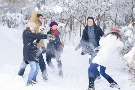 snowball: A group of young people playing in the snow