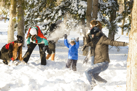 snowballs: A group of young people playing in the snow