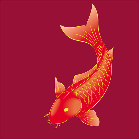 backround: gold-fish