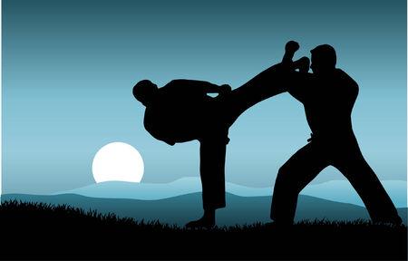 kung: kung fu