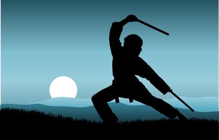 fu: kung fu
