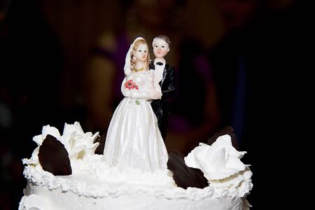 A close up picture of a wedding cake topper photo