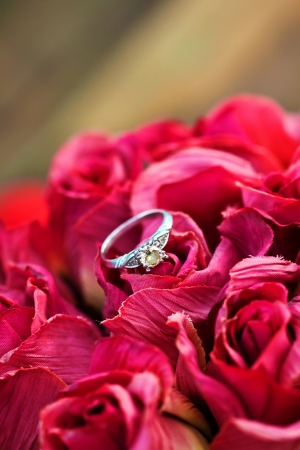 A close up of wedding band , engagement ring photo