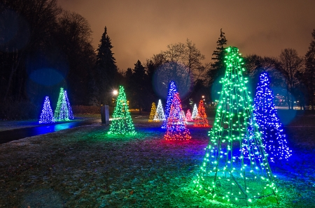 Light show in a park for christmas