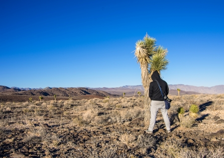indecent: Man in a desert pisses on a plant Stock Photo