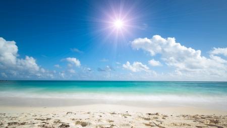 horizonte: maravillosa playa tropical