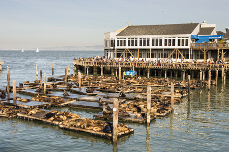 warren: SAN FRANCISCO,USA - DECEMBER 15, 2013: view of pier 39 on San Francisco Bay.Pier 39 was first developed by entrepreneur Warren Simmons and opened October 4, 1978. Editorial