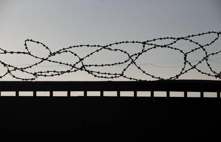 barb wire: Razor wire