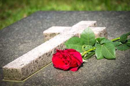 Single red rose on a tomb