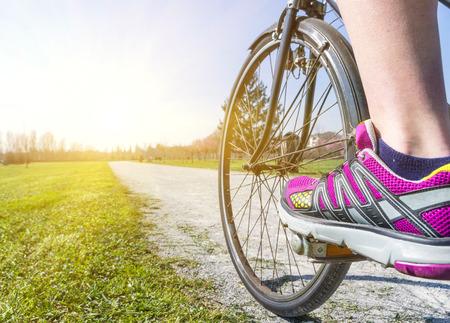 Vélo dans le parc Banque d'images - 26592802