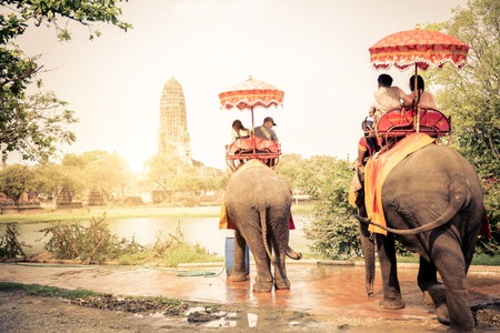 culture: Tourists riding elephants in Ayutthaya,Thailand