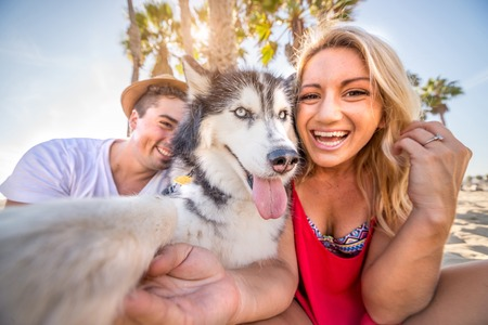 funny picture: Happy couple taking a selfie with their husky - Dog hoding camera and taking a funny picture with his family Stock Photo