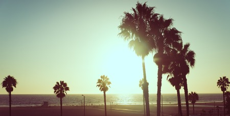 サンタモニカー、カリフォルニア州のヤシの木と夕日旅行についての概念とアメリカ