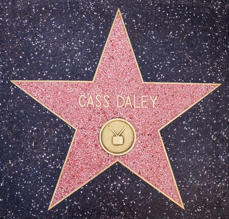 hollywood   california: HOLLYWOOD,CA - OCTOBER 8,2015: Cass Daley star on Hollywood Walk of Fame in Hollywood, California. This star is located on Hollywood Blvd. and is one of 2400 celebrity stars.