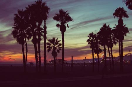 surfeur: Couleurs de coucher du soleil avec des palmiers silhouettes à Santa Monica, Los Angeles. notion à propos de voyages