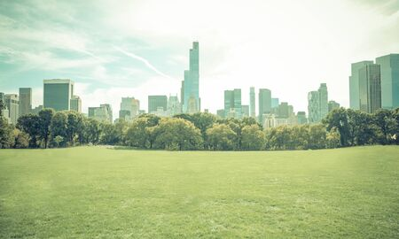 city park skyline: Central park in New york city without people. Central park is the most important park of the city