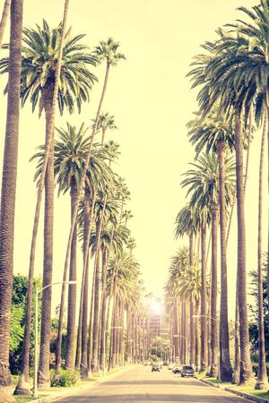 일몰, 로스 앤젤레스에서 팔메 나무와 비벌리 힐스 거리 스톡 콘텐츠