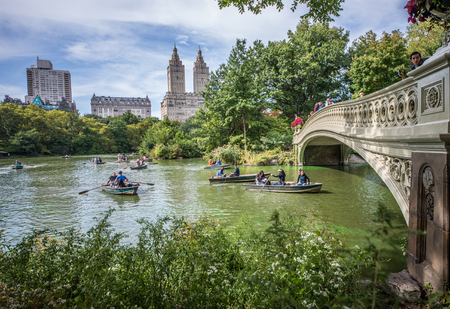 central park: Bow Bridge in Central Park, New York