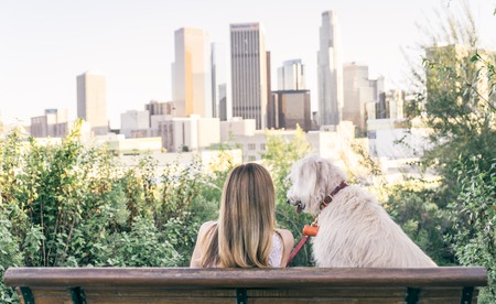 pet therapy: Woman sitting with her dog and enjoying the skyline view