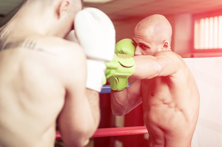 artes marciales mixtas: Fighters fighting on the ring.