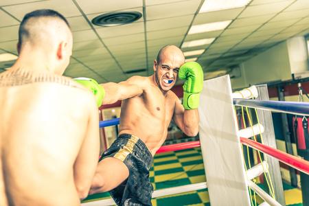 peleando: Combatientes que luchan en el anillo.