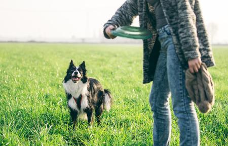 platillo volador: Mujer jugando con su perro collie de la frontera, lanzando el platillo volante